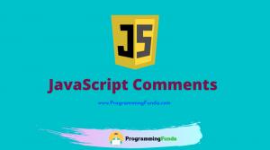 JavaScript Comment