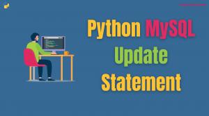 Python MySQL Update Statement