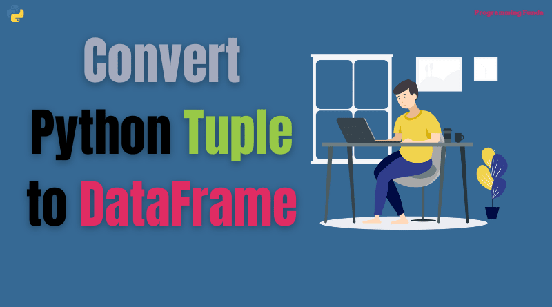 convert a tuple to a dataframe